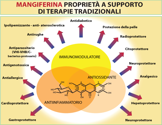 mangiferina proprieta